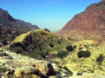 Trekking through the colorful Dana Biosphere Reserve