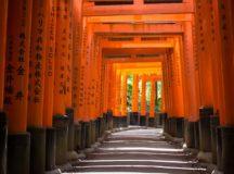 The torii-lined pathway at Fushimi Inari-taisha Shrine. Photo courtesy of  Simon Q.