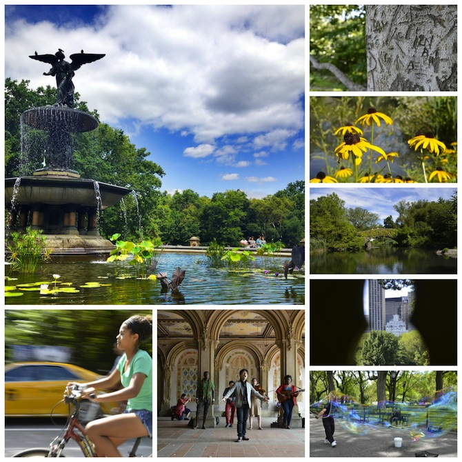 Discover New York: Central Park Through The Eyes Of A Local Photographer