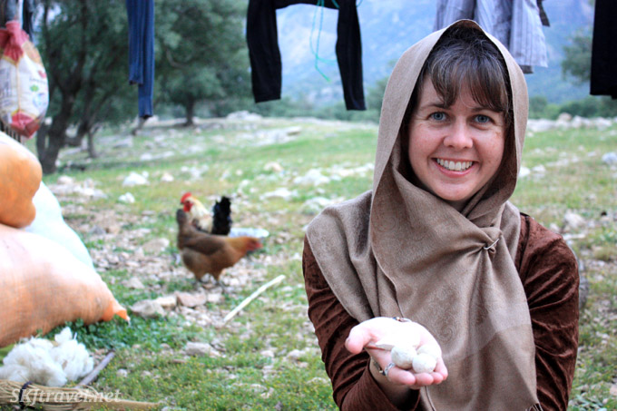 Eating hardened sheep yogurt balls with the Qashqaei nomads