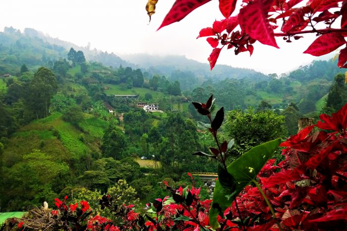 day trips from medellin