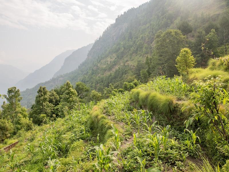 mountain views annapurna region